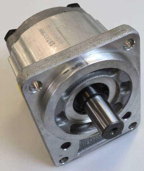 Bomba de engrenagem (modelo: 11101008010)